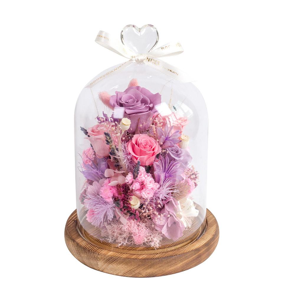 鐘罩恆星花-粉紫